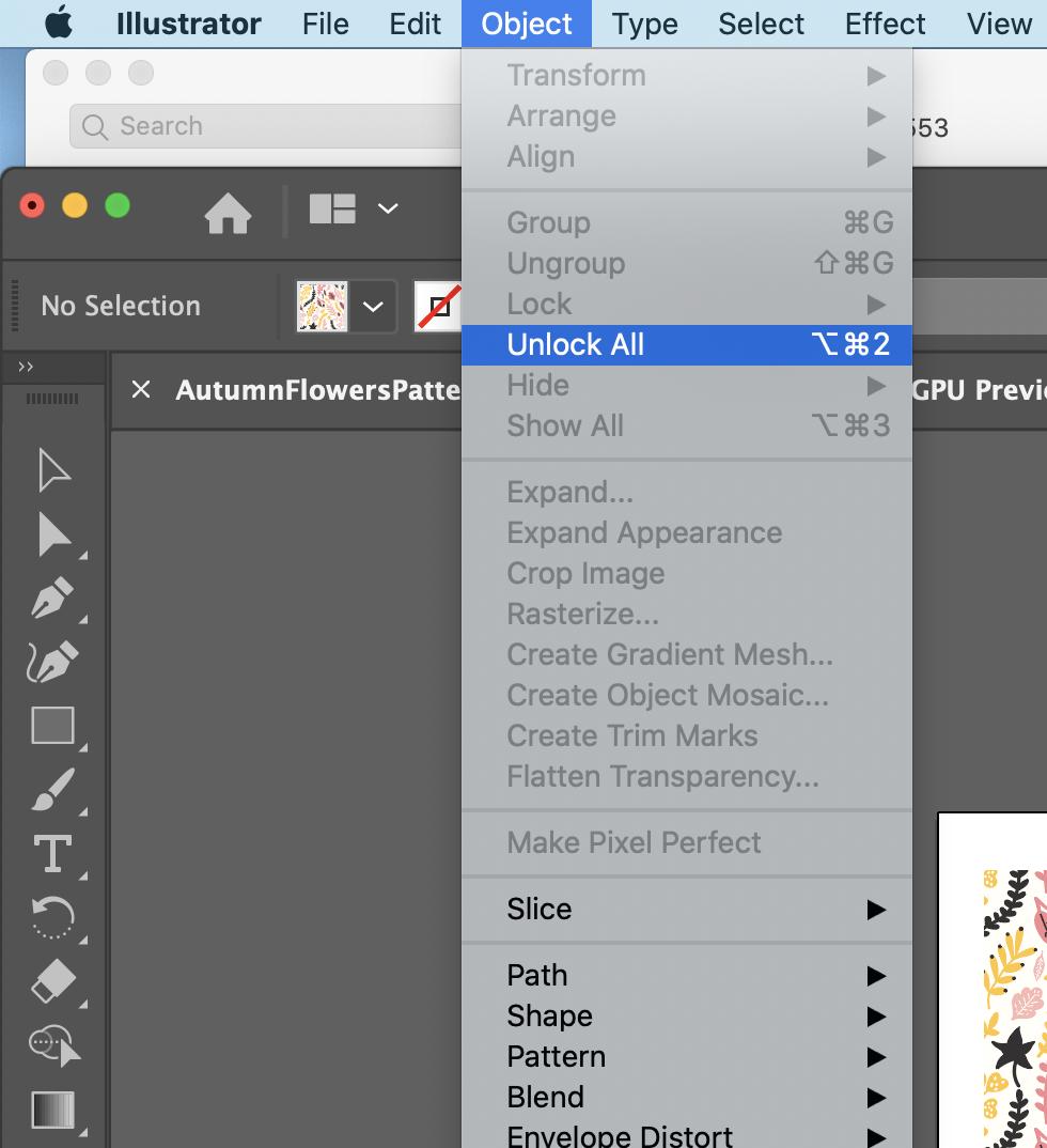 Illustrator - Unlock All